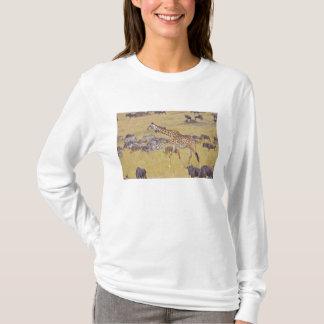 Maasai Giraffes roaming across the Maasai Mara 2 T-Shirt