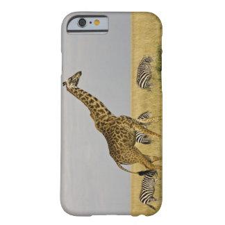 Maasai Giraffes roaming across the Maasai Mara 3 Barely There iPhone 6 Case