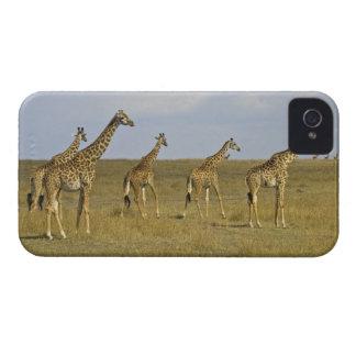 Maasai Giraffes roaming across the Maasai Mara Case-Mate iPhone 4 Case