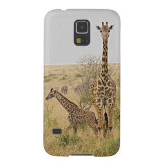 Maasai Giraffes roaming across the Maasai Mara Galaxy S5 Case