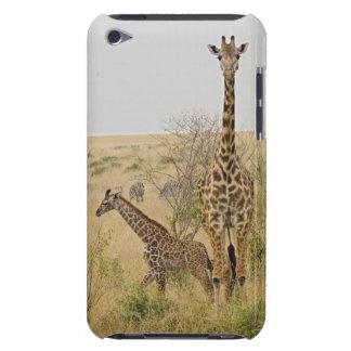 Maasai Giraffes roaming across the Maasai Mara iPod Case-Mate Case