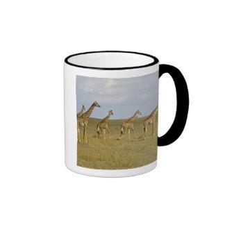Maasai Giraffes roaming across the Maasai Mara Coffee Mugs