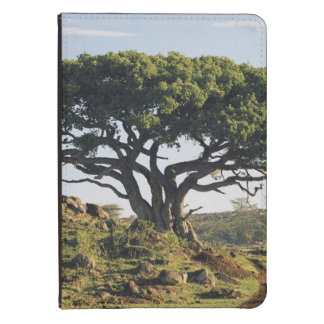 Maasai Mara Game Reserve Kindle Cover