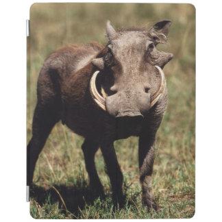 Maasai Mara National Reserve, Desert Warthog iPad Smart Cover