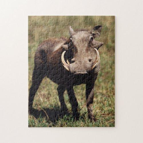 Maasai Mara National Reserve Desert Warthog Jigsaw Puzzle