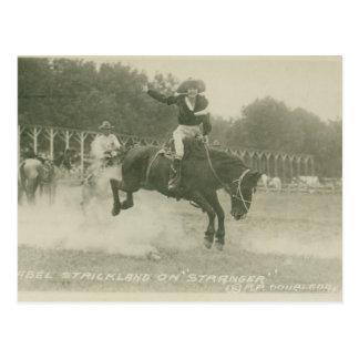 Mabel Strickland on Stranger. Postcard