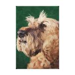 Mabel the Irish terrier Canvas Prints