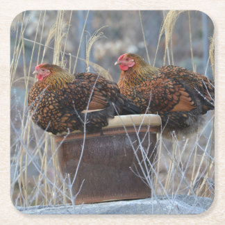 Mable and Harriet Chicken Party Coasters