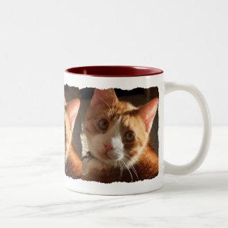 Mac Cat Photo Triple Mug