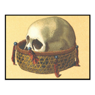 Macabre: Skull - New Guinea Postcard