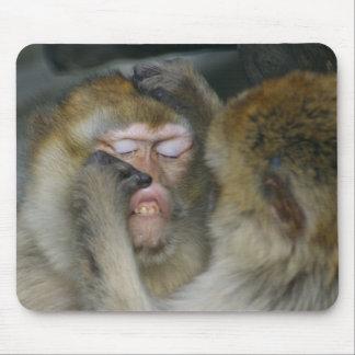 Macaca sylvanus mouse pad
