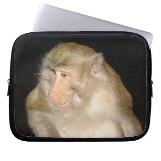 Macaque curioso de la isla de Phuket en Tailandia Mangas Computadora