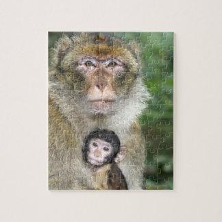 Macaque de Barbary. Adulte con babyMacaca Puzzles Con Fotos