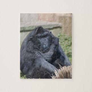 Macaque de Sulawesi Rompecabezas
