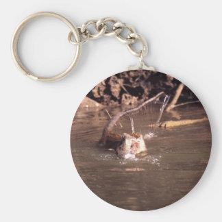 Macaque Monkey in Borneo Basic Round Button Keychain