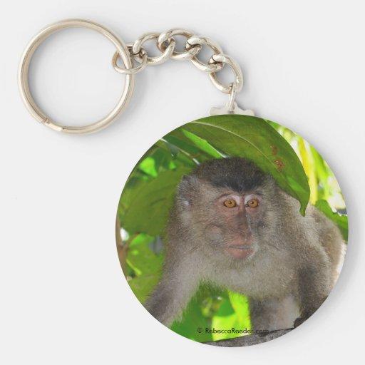 Macaque Monkey in rainforest Keychain