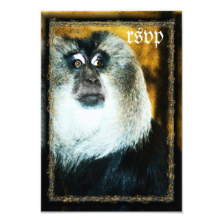 Macaque Monkey Photo Zoo Wedding RSVP Cards