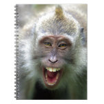 Macaque monkey spiral note book