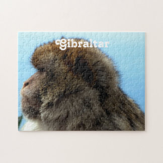 Macaque Puzzles Con Fotos