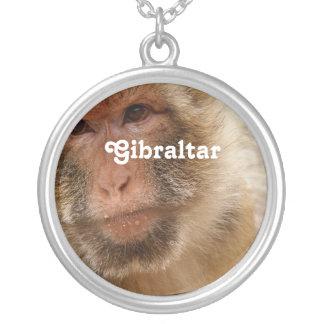 Macaques de Gibraltar Barbary Colgante Redondo