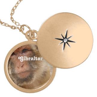 Macaques de Gibraltar Barbary Medallón