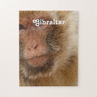 Macaques de Gibraltar Barbary Rompecabezas