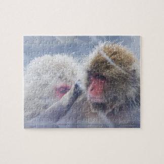 Macaques japoneses (fuscata del Macaca) que prepar Puzzle