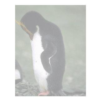 Macaroni Penguin Standing Erect Letterhead