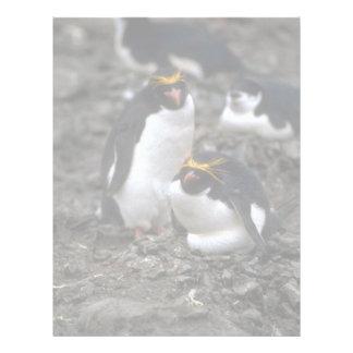 Macaroni Penguins - Pair At Nest Letterhead