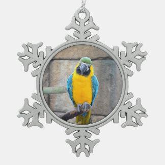 macaw azul del oro en loro de la vista delantera d adornos