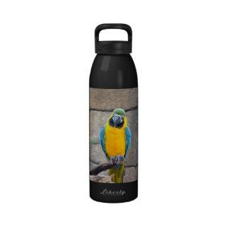macaw azul del oro en loro de la vista delantera d botellas de agua reutilizables