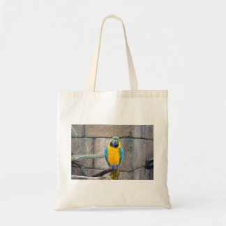 macaw azul del oro en loro de la vista delantera d bolsas lienzo