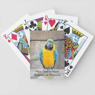 macaw azul del oro en loro de la vista delantera d baraja cartas de poker