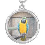 macaw azul del oro en loro de la vista delantera d pendientes personalizados