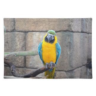 macaw azul del oro en loro de la vista delantera d manteles individuales