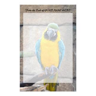 macaw azul del oro en loro de la vista delantera d papelería de diseño