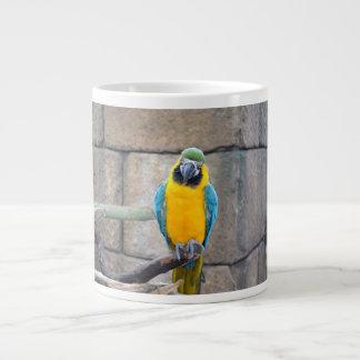 macaw azul del oro en loro de la vista delantera d tazas jumbo