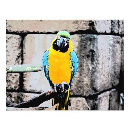macaw azul del oro en loro del paintery de la perc tarjeton