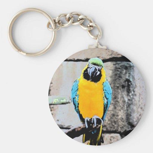 macaw azul del oro en loro del paintery de la perc llavero redondo tipo pin