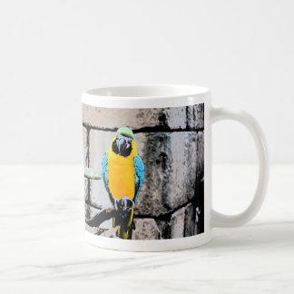macaw azul del oro en loro del paintery de la taza básica blanca