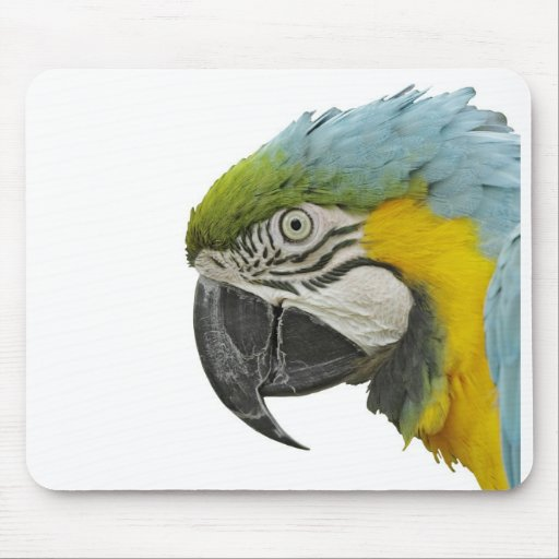 Macaw azul Mousepad Tapete De Ratones