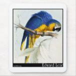 Macaw azul y amarillo alfombrilla de ratón