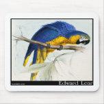 Macaw azul y amarillo tapete de ratones