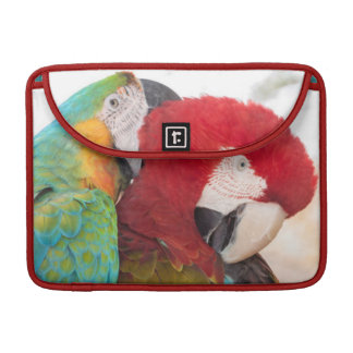 Macaw Azul-y-Amarillo y Macaw de Scarlett Funda Para Macbooks