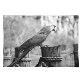 macaw bird bw animal image cloth placemat