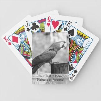 macaw bird bw animal image bicycle playing cards
