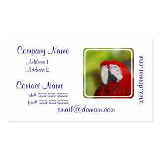 Macaw bonito del escarlata tarjetas de visita