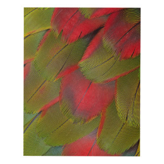 Macaw Breast Feather Design Panel Wall Art
