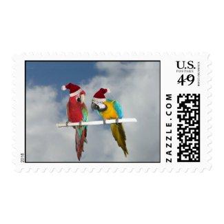 Macaw Christmas Postage