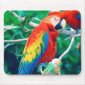 Macaw colorido mousepads